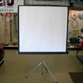 "Projection Screen - 50"" x 50"""