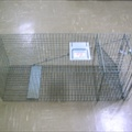 Animal Trap - Large